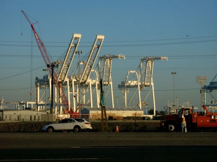 grues / cranes