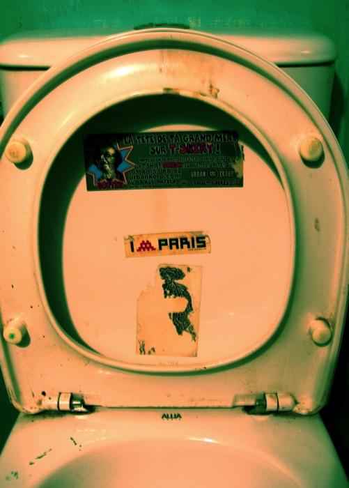 toilettes parisiennes / parisian toilets