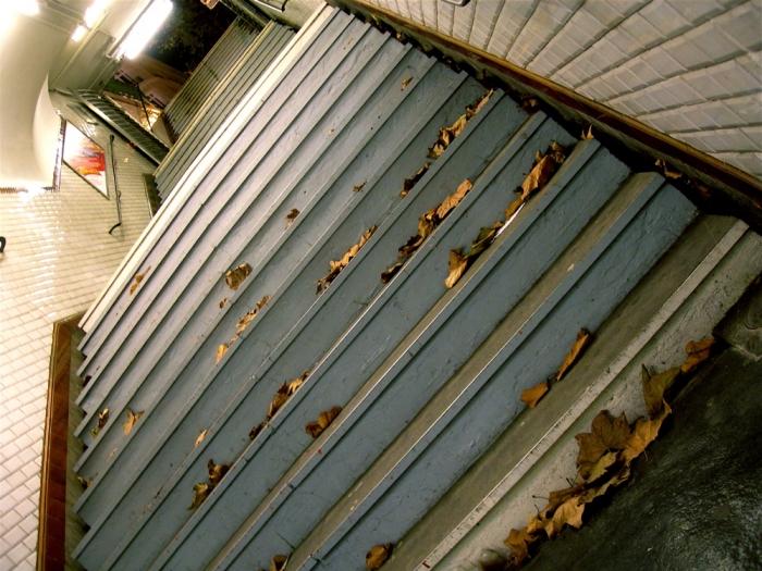 métro automnal / autumnal subway