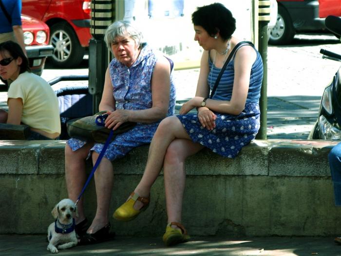 chien et robes à imprimés / dog & patterned dresses