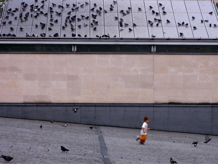 enfant et pigeons / child & pigeons