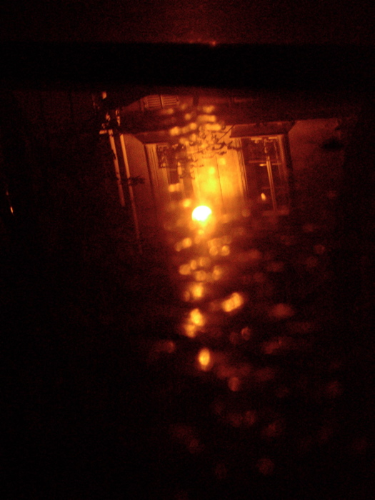 reflets pluvieux / rainy reflexions