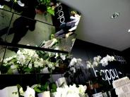 fleurs / flowersPas de commentaires.