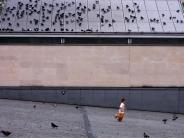 enfant et pigeons / child & pigeons2 commentaires.