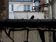 paysage parisien / parisian landscapePas de commentaires.