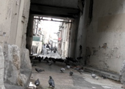 la f�te des pigeons / a pigeons party1 commentaire.